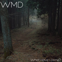 What Have I Done? cover art