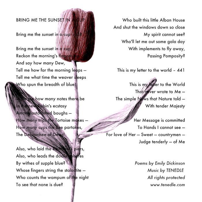emily dickinson robin poem