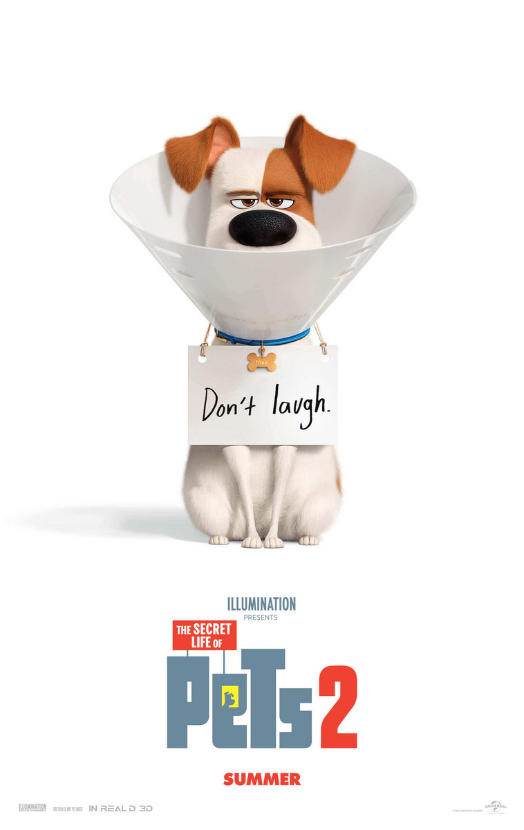 the secret life of pets online free