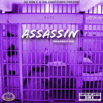 8300 Assassin cover art