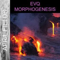 Morphogenesis cover art
