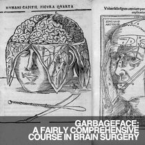 A FAIRLY COMPREHENSIVE COURSE IN BRAIN SURGERY cover art