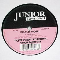Roach Motel - Wild Luv (David Duriez Wild Bitch Remix) [2019 Remastered] cover art
