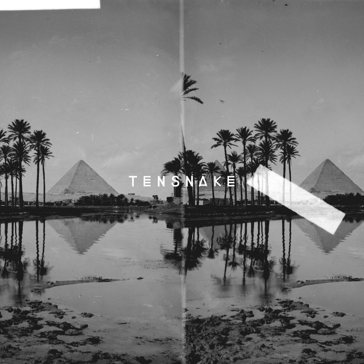 Desire (Instrumental) | Tensnake