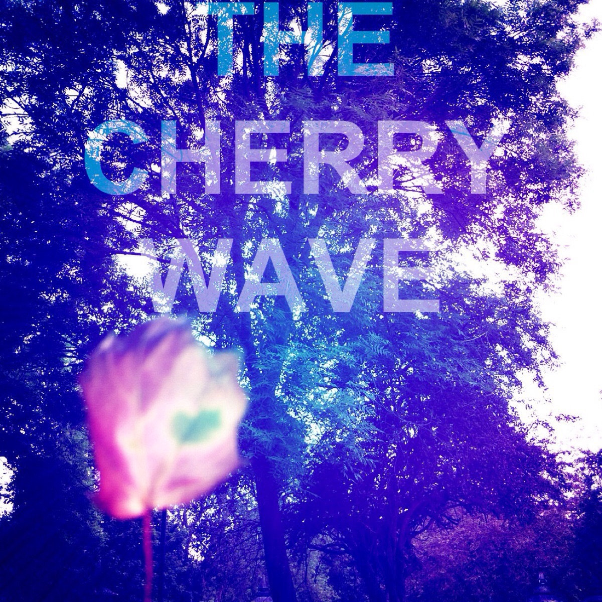 The Cherry Wave (Demo) | The Cherry Wave