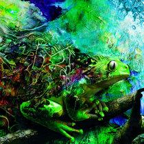 Kampu cover art