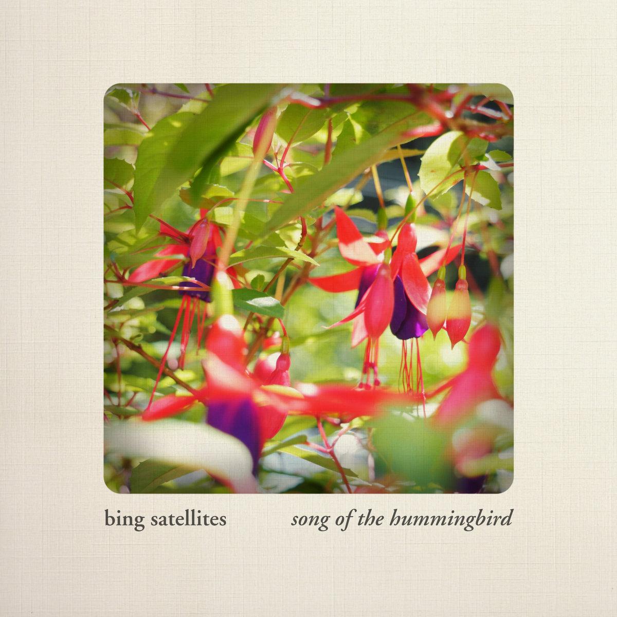 Song Of The Hummingbird Bing Satellites