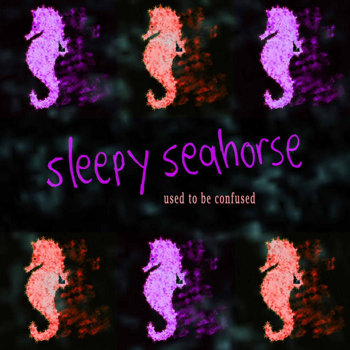 Sleepy seahorse by sleepy seahorse solutioingenieria Image collections
