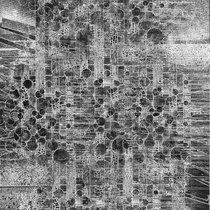 Carpinus Betulus cover art