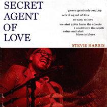 Secret Agent Of Love cover art