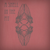 A Shell in the Pit cover art