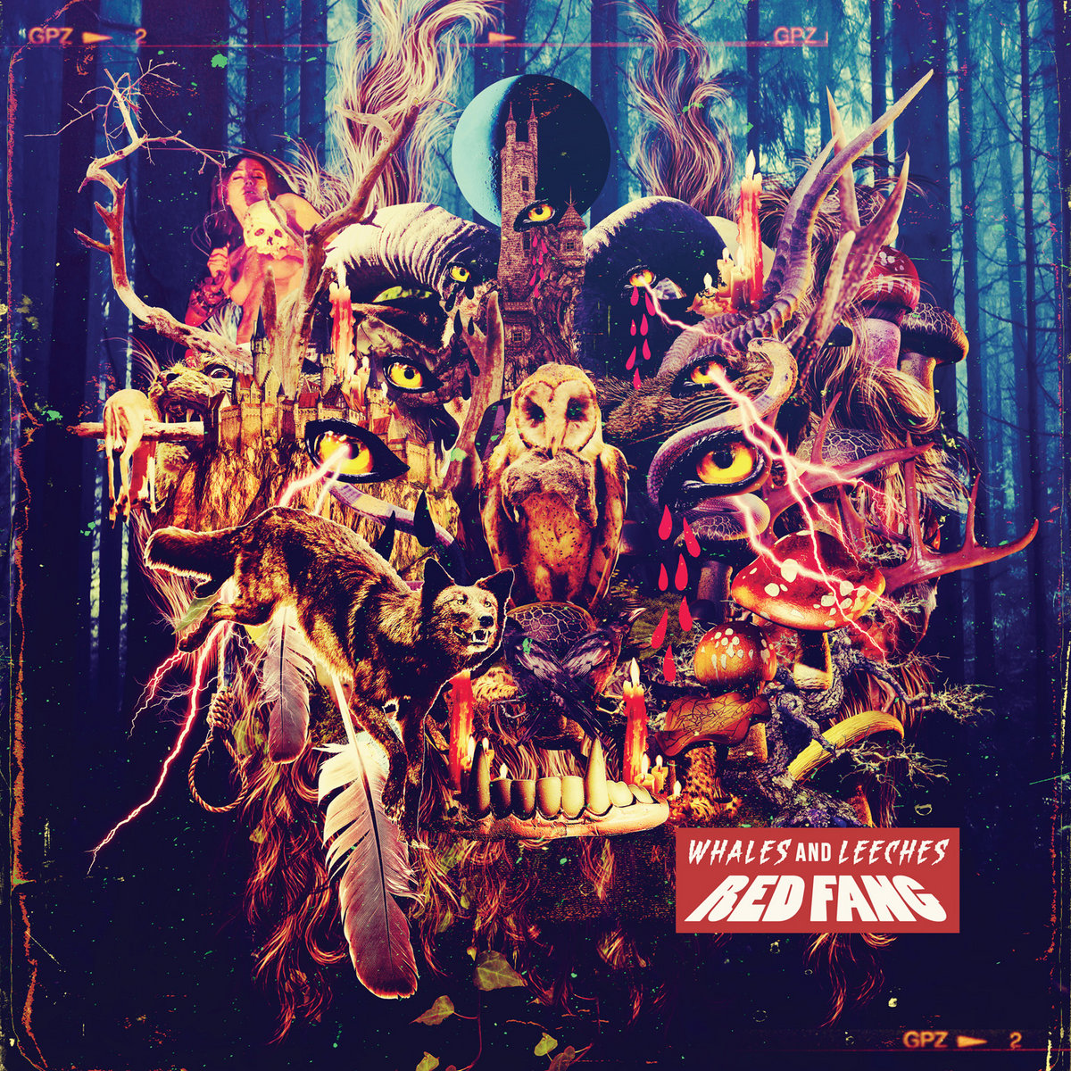 by red fang