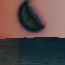 Replication Bubble cover art