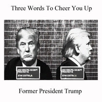 Former President Trump cover art
