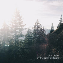 in the near distance cover art