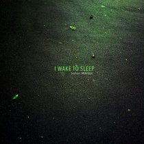 I Wake to Sleep cover art