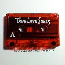 True Love Songs (1) cover art