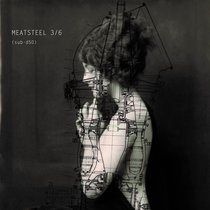 Meatsteel 3/6 - SUBSIST.50D cover art