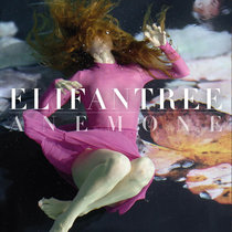 Anemone cover art