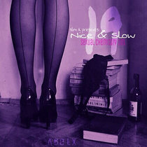 Nice & Slow 19 (Sexual Chemistry 101) cover art