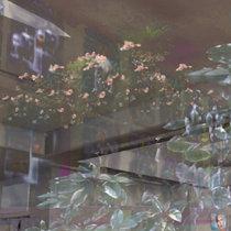 Enhanced Interior Landscapes cover art