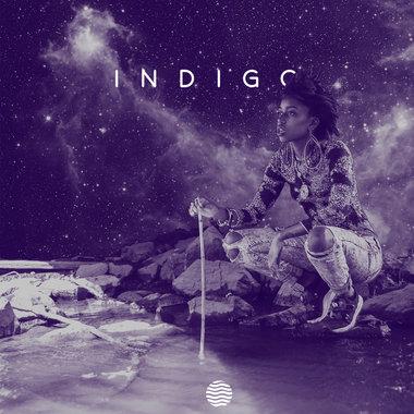 INDIGO main photo
