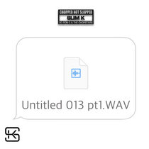 Untitled 013 pt1.WAV cover art