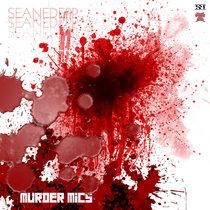 Murder Mics / Her Song cover art