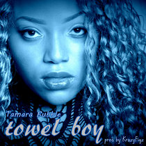 Towel Boy cover art