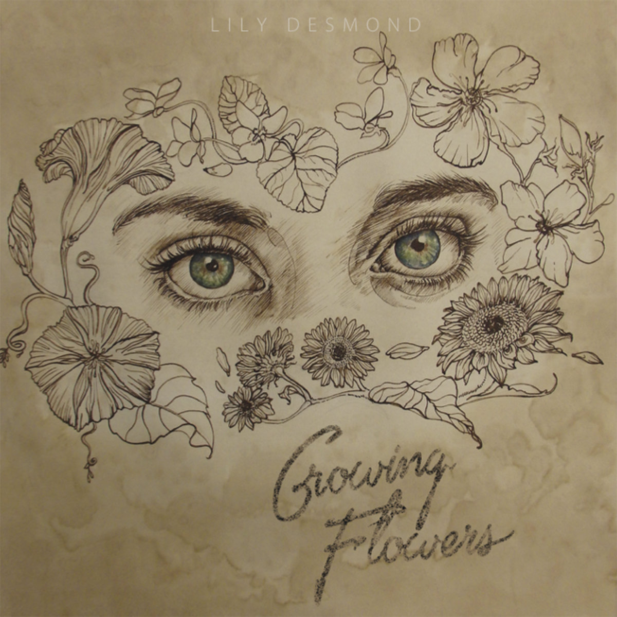 Growing Flowers Lily Desmond