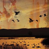 ...fading... (Dusk023CD) cover art