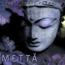 Mettā cover art