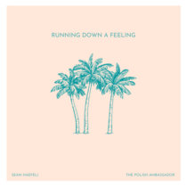 Running Down a Feeling feat. Sean Haefeli cover art