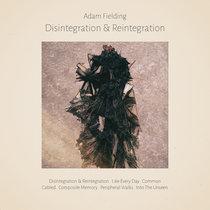 Disintegration & Reintegration cover art