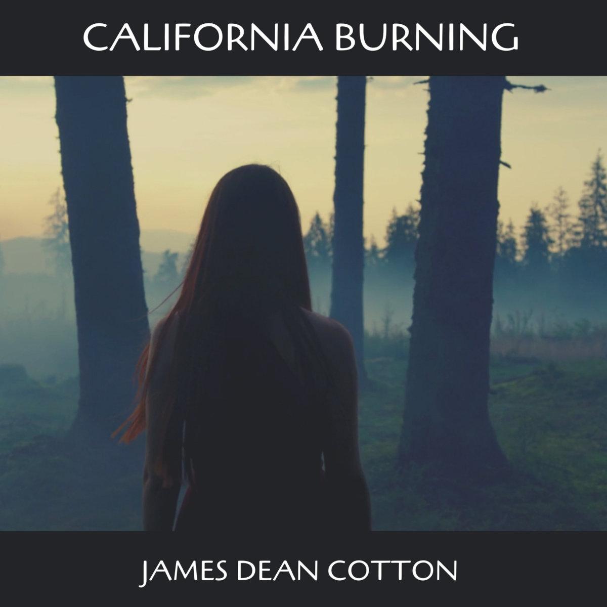 California Burning by James Dean Cotton