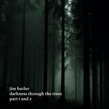 Darkness Through the Trees by Jim Butler