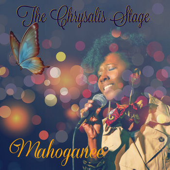 The Chrysalis Stage (2011) by Mahoganee
