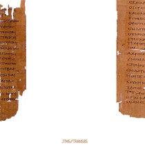 Translation VII cover art