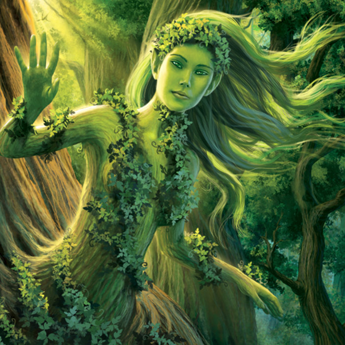 how to get to dark world tree
