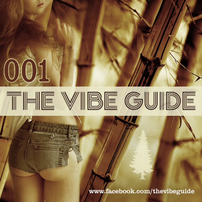 The vibe guide vol. 2   the vibe guide.