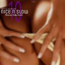Nice & Slow 10 (Sexual Endurance) cover art