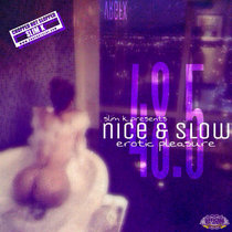 Nice & Slow 48.5 - Erotic Pleasure cover art