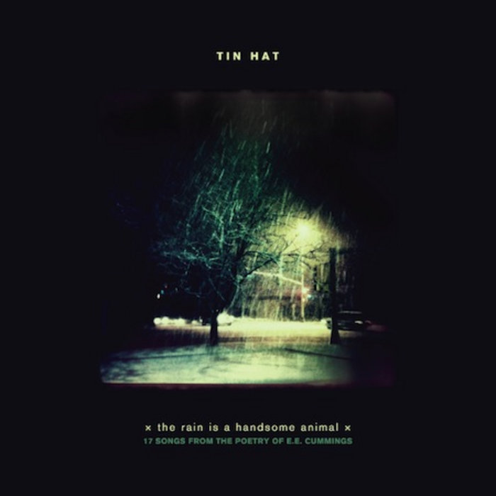 the rain is a handsome animal | Tin Hat