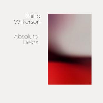 Absolute Fields by Phillip Wilkerson
