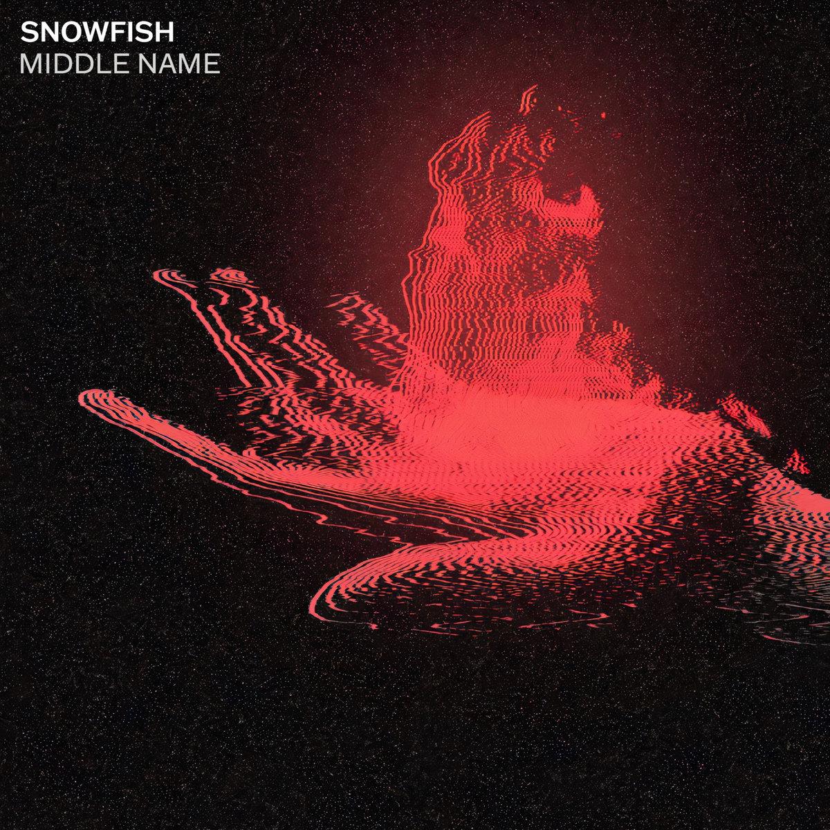 www.facebook.com/snowfishband