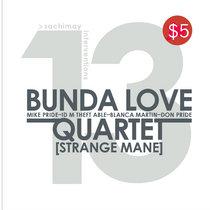 Strange Mane cover art
