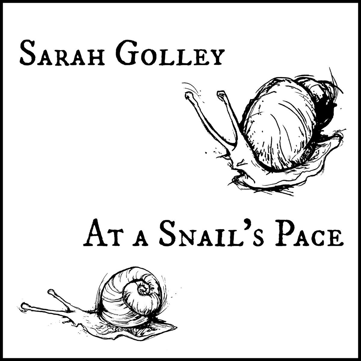 At a Snail's Pace by Sarah Golley
