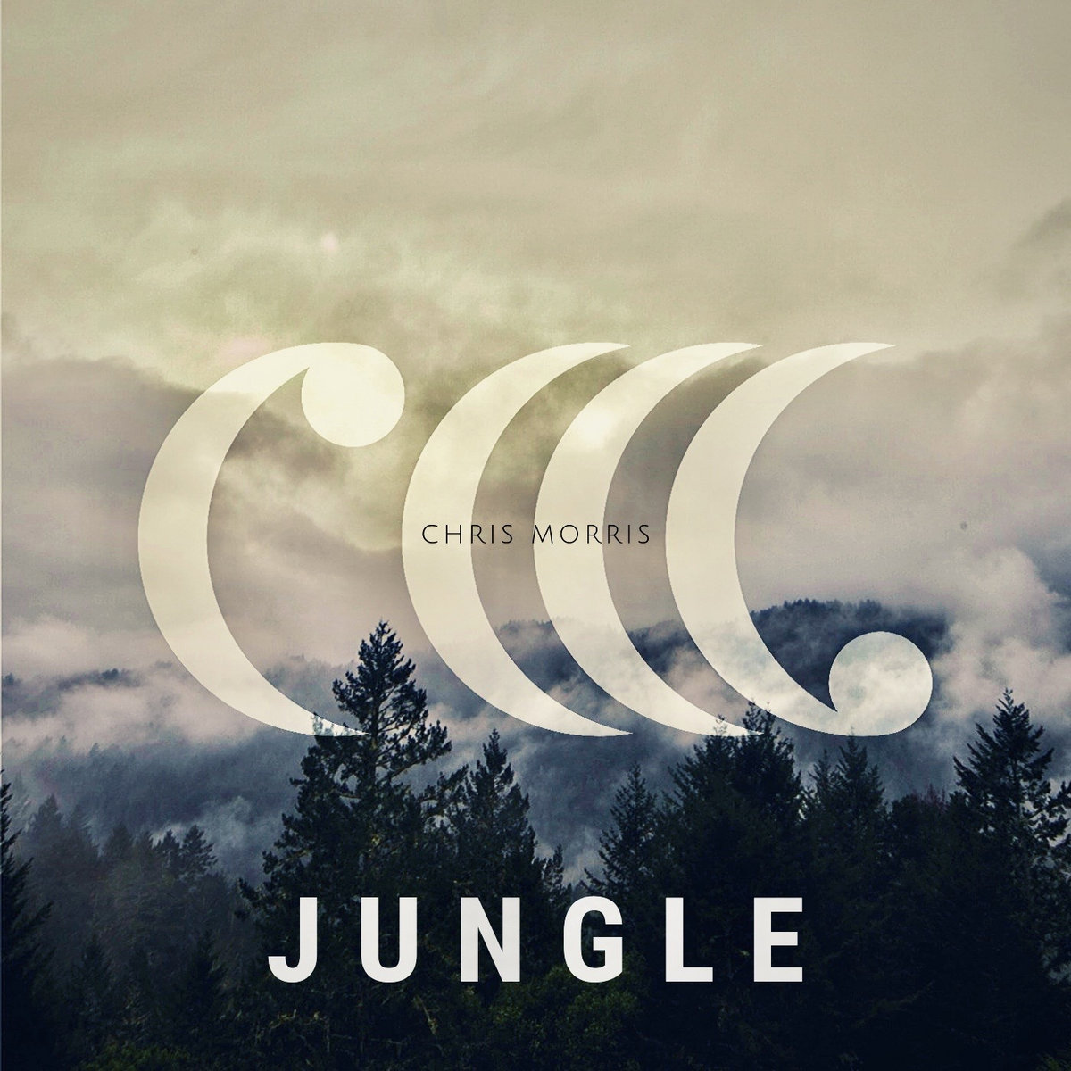 Jungle by Chris Morris