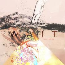 Wait cover art