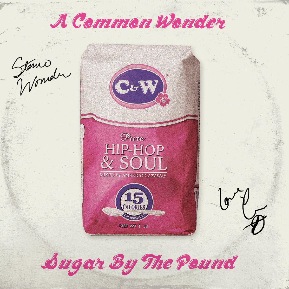 A Common Wonder [Instrumentals + Bonus Tracks] | Amerigo Gazaway
